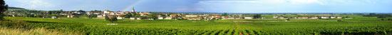 Panoramic photo of Meursault in June