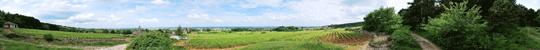 Panoramic of Fixey June 2010